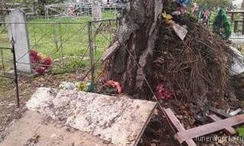 Зея. «Не можем подойти к могиле!»: жители снова жалуются на мусор на городском кладбище - Похоронный портал