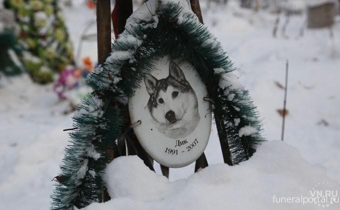 Кладбище домашних животных – как новосибирцы хоронят питомцев - Похоронный портал
