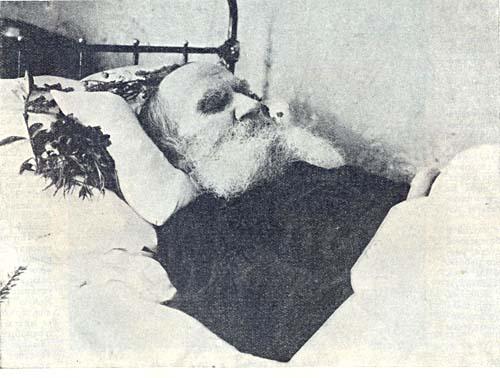 Толстого, сливают свое горе с горем россии и всего мира маковицкого и дочери александры львовны сел в поезд, следовавший до ростова-на-дону.